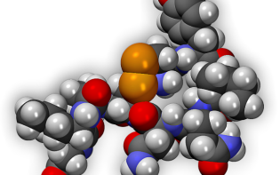 3D model of an oxytocin molecule