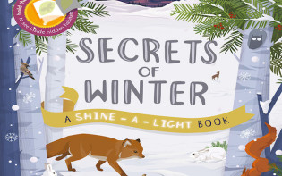 Secrets of Winter was a great book to read!