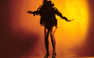 The Last Shadow Puppets new album cover.Credit@youtube.com