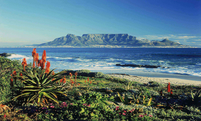Table Mountain. Credit@flickr.com