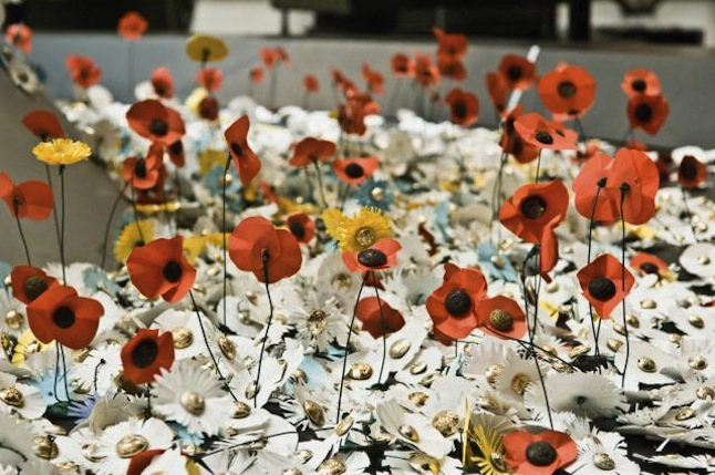 A Poppy Field Imperial War Museum London