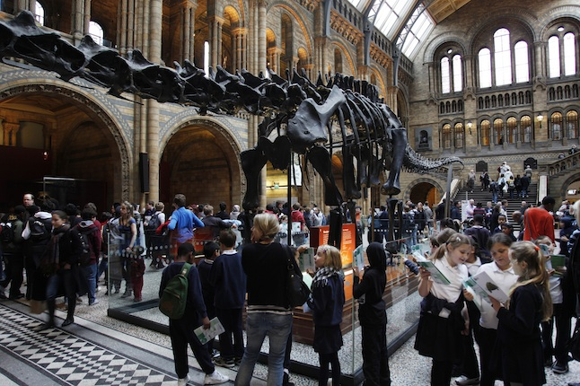 UK - London - Natural History Museum