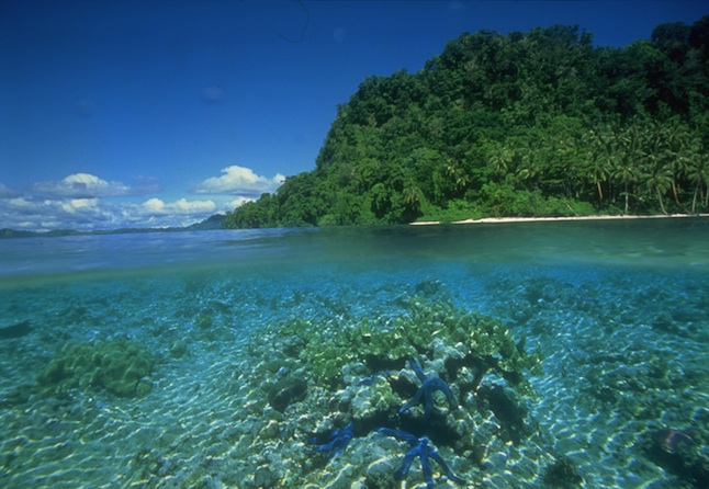 In Solomon Islands Waters