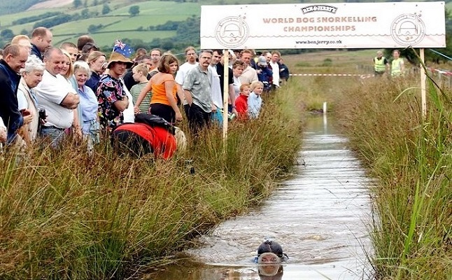 The annual Bog Snorkelling Championships. Credit@Ethreon via flickr.com