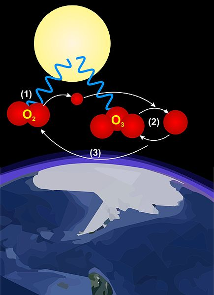 Diagram of the cylic ozone reaction in the stratosphere. Credit@Alun009