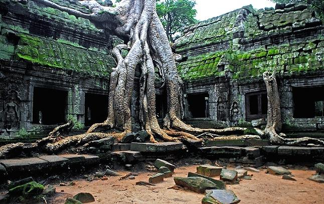 Ta Prohm temple within the Angkor temple complex. Credit@ Akshay Mahajan via Flickr.com