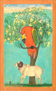 A Parrot Perched on a Mango Tree.  Credit@ Jagdish and Kamla Mittal  Museum of Indian Art, Hyderabad